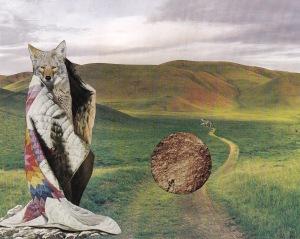 Coyote's blanket
