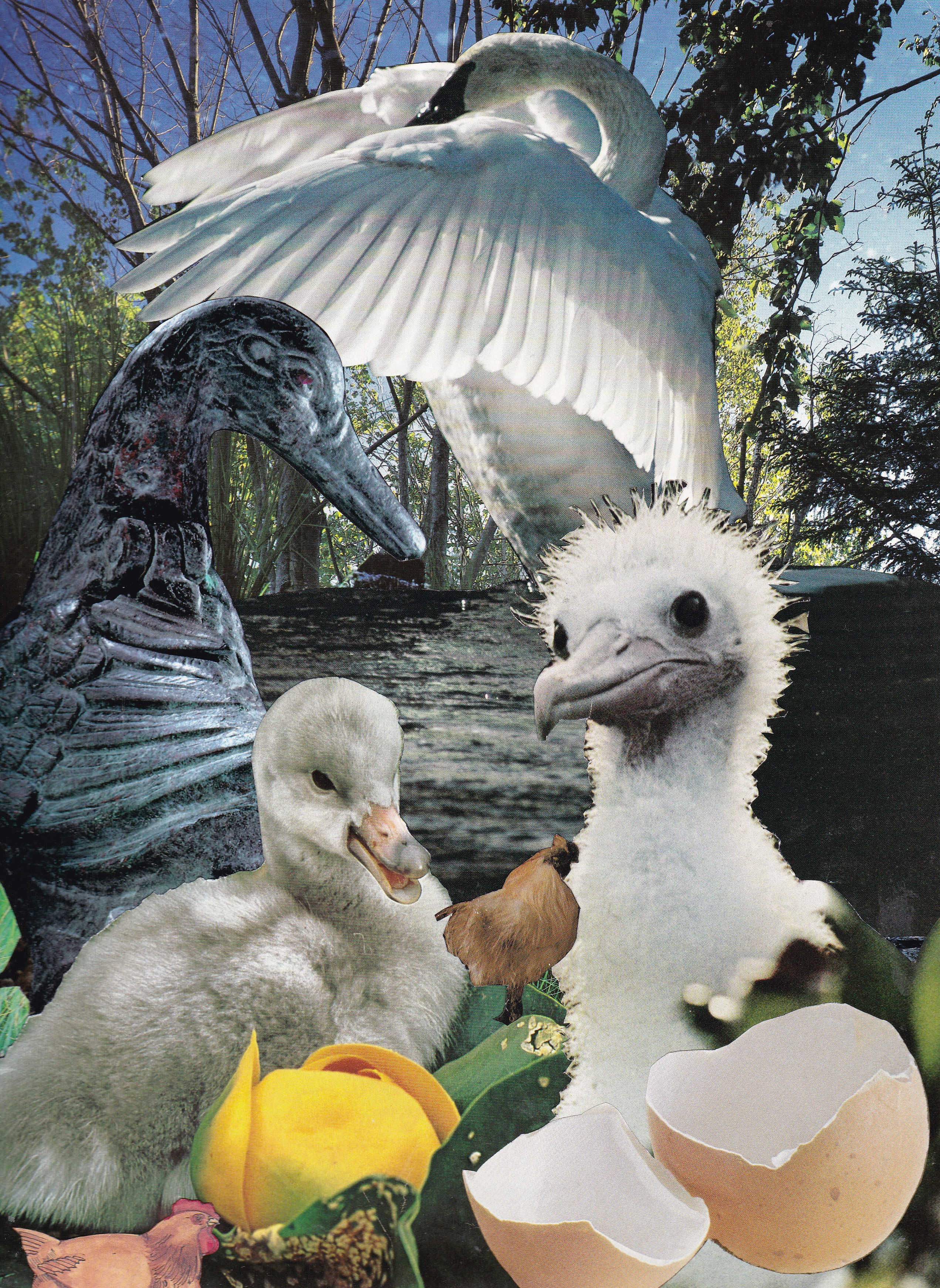 Il Fullxfull Irsr likewise Article Ee Adee X likewise Img also Maxresdefault besides Picmonkey Collage. on the ugly duckling book
